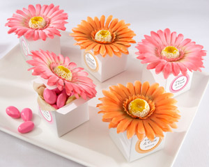 Daisy Delight Gerbera Daisy Favor Box - Bright Orange - Hot Pink - Set of 24