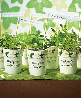 Mini Flower Pots (Set of 6)