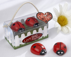 Love Bug Ladybug Magnets