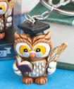 Wise Graduation Owl Key Ring