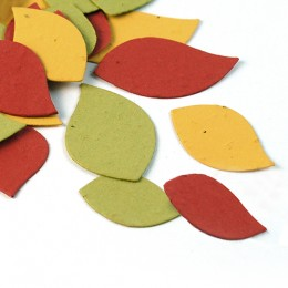 Autumn Leaf Eco Confetti
