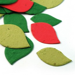 Christmas Leaf Eco Confetti
