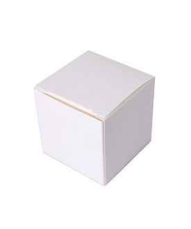 Cube Favor Boxes (set of 50)