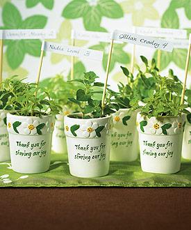 Mini Flower Pots (Set of 6)