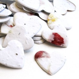 Heart Shaped Plantable Confetti - Set of 350