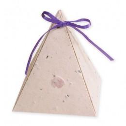 Plantable Pyramid Favor Box